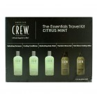 American Crew Citrus Mint Essentials Kit